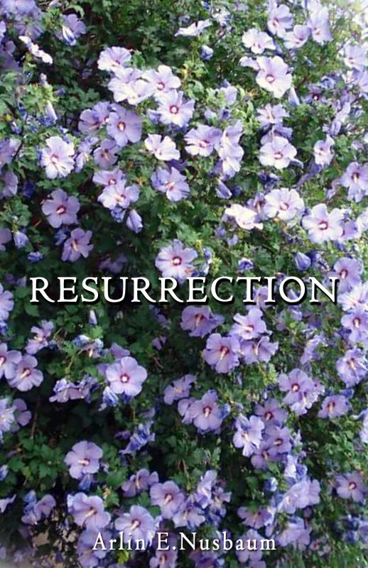 RESURRECTION 3:33